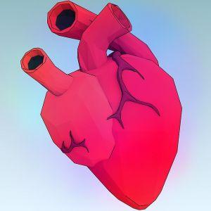 flavonoidi benefici malattie cardiache foto2