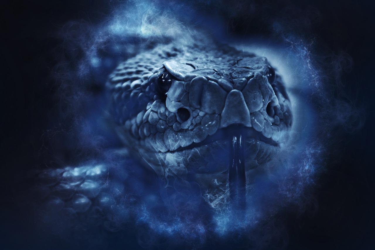 Sognare serpenti quale significato pu avere la salute for Quali sono i rettili