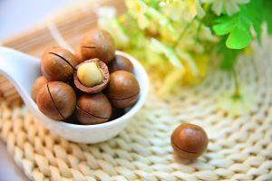 noci di macadamia proprieta foto1